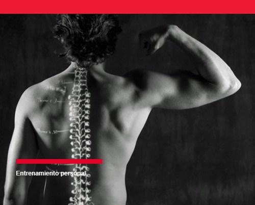 entrenamiento de fuerza y la osteoporosis