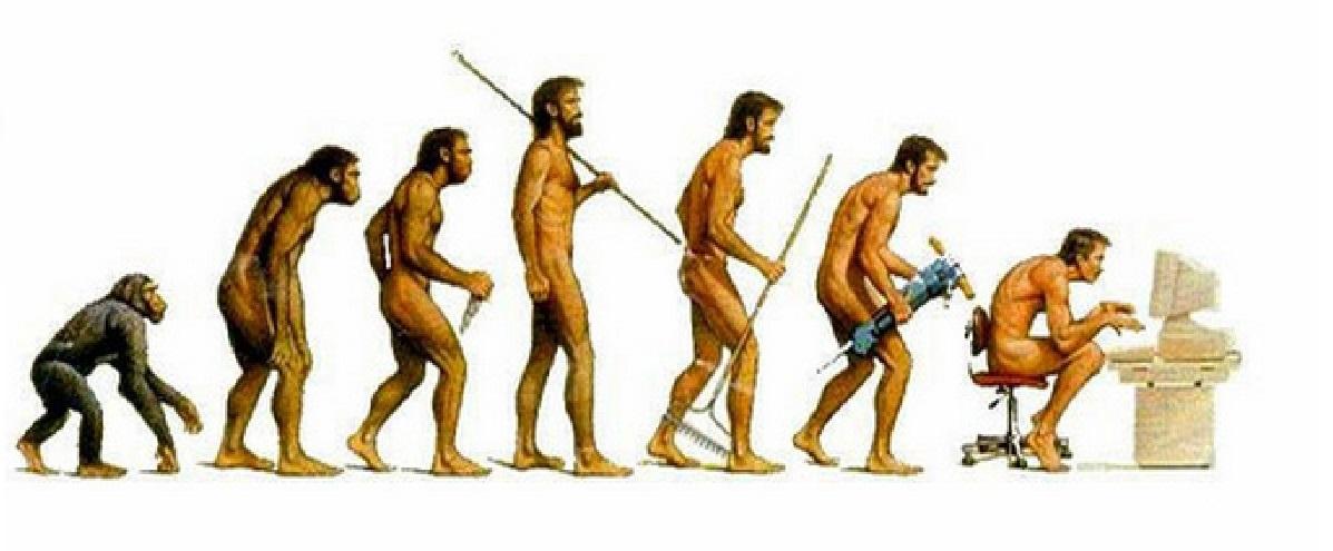 evolution ensa