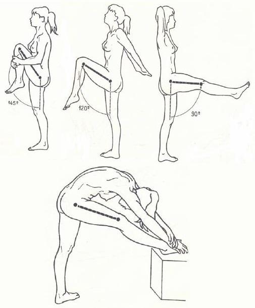 Movilidad de cadera: ¿Pasas mucho tiempo sentado? - Ensa Sport