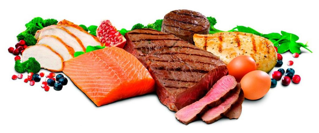 proteinas ensa